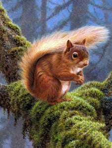 Squirrel Diamond Painting Kit