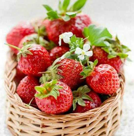 Strawberries DIY Diamond Painting