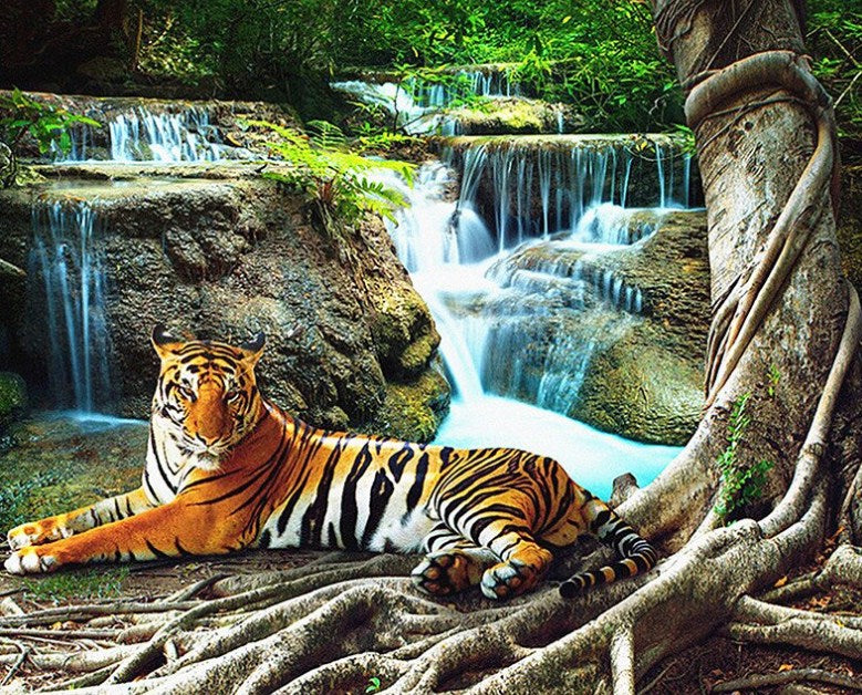 Tiger Resting by Waterfall Diamond Painting Kit
