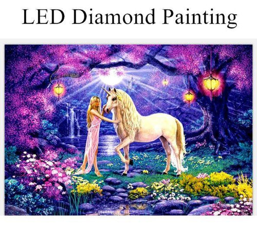Unicorn & Princess LED Kit