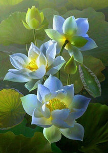 White Lotus Paint by Diamonds