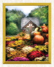 Load image into Gallery viewer, Pumpkin Garden DIY Diamond Painting