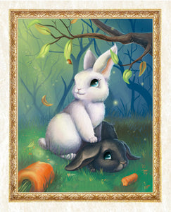Black & White Rabbits in Forest