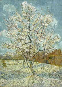 Peach Tree Van Gogh