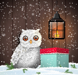 Christmas Owl Diamond Painting
