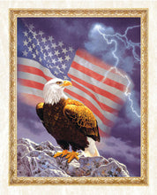 Load image into Gallery viewer, American Flag & Eagle Diamond Painting
