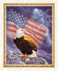 American Flag & Eagle Diamond Painting