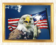 Load image into Gallery viewer, Eagle by the Flag DIY Diamond Painting