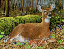 Load image into Gallery viewer, Deer DIY Diamond Paintings