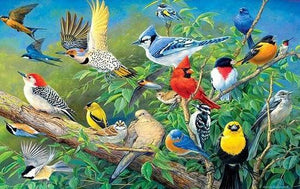 Collection of Birds DIY Diamond Painting