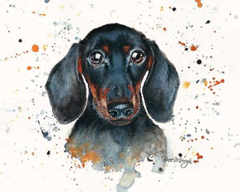 Sid Sausage Dog Canvas Cutie 15x20cm by Bree Merryn