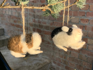 Mixed Wool Guinea Pig Decoration