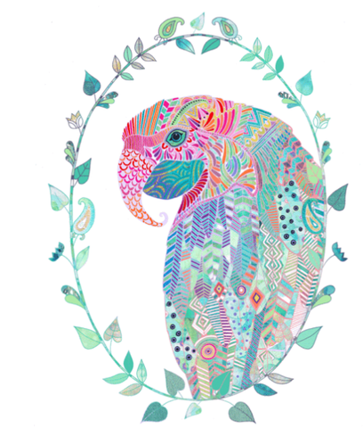 Rainbow parrot sold on behalf of Hannah Davies
