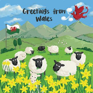 Greetings from Wales Card