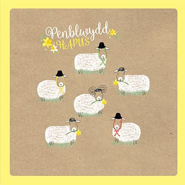 Cute Sheep and daffodils Penblwydd Hapus - Happy Birthday Card