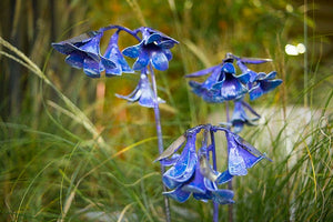 Recycled metal bluebell flower sculpture for the garden.