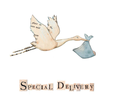 Special delivery stork baby boy Greetings Card by Rachel Biddulph