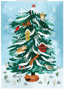 Pack of 5 Christmas Conifer Christmas Cards