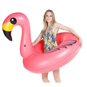 Flamingo Inflatable Pool Tube - Jasonwell