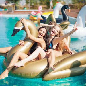 Golden Swan Inflatable Pool Float - Jasonwell