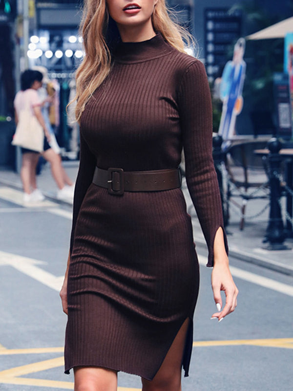 Turtleneck Date Work Solid Sweater Dress