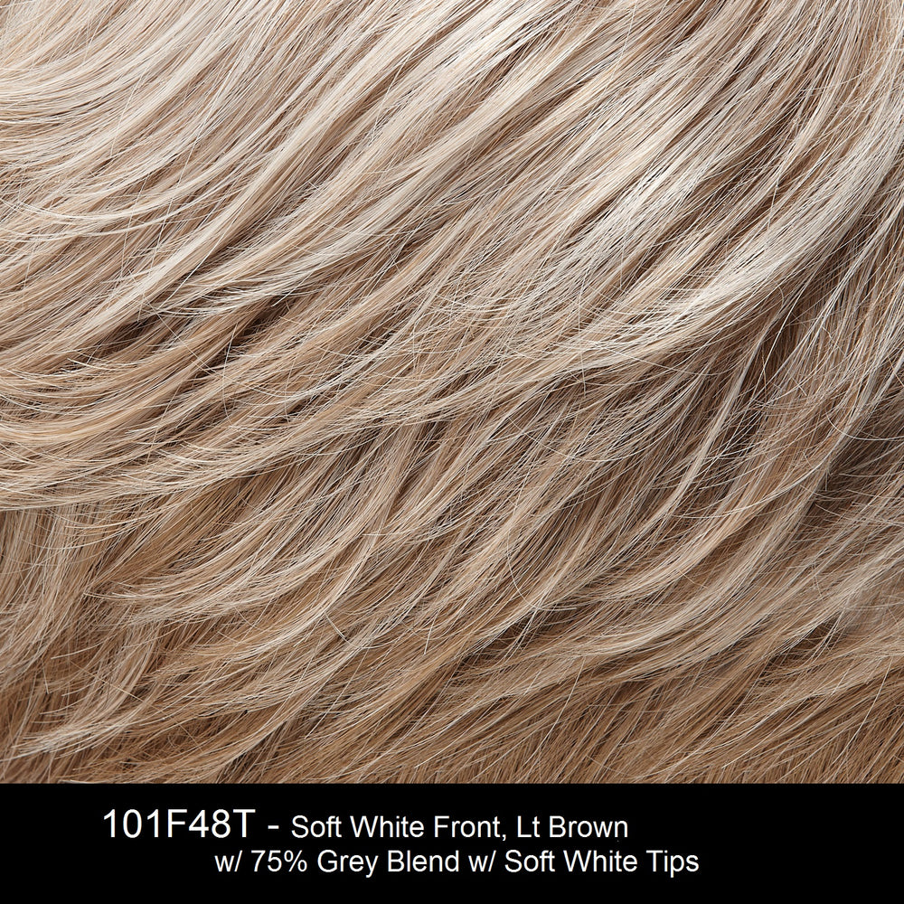 101F48T | Soft White Front, Light Brown with 75% Grey Blend with Soft White Tips