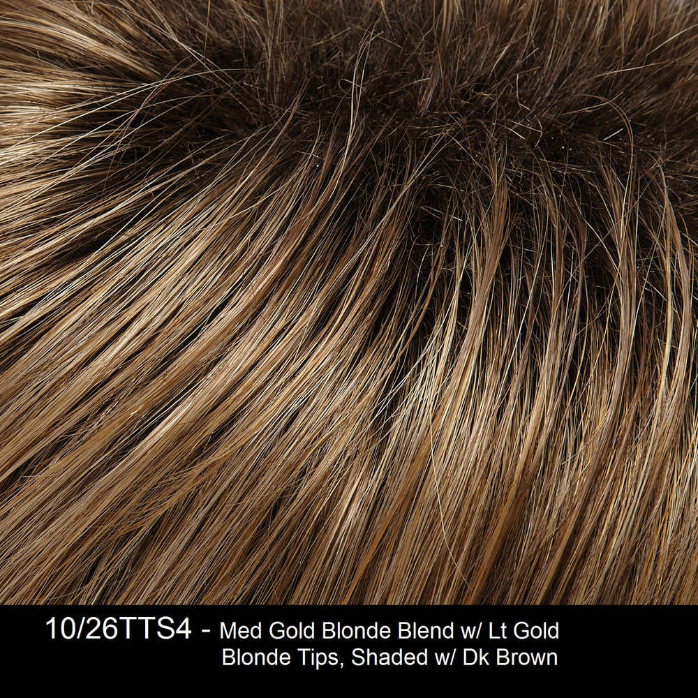 10/26TTS4 | Medium Gold Blonde Blend with Light Gold Blonde Tips, Shaded with Dark Brown