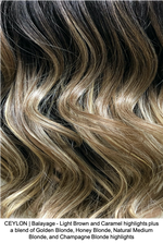 CEYLON | Balayage - Light Brown and Caramel highlights plus a blend of Golden Blonde, Honey Blonde, Natural Medium Blonde, and Champagne Blonde highlights