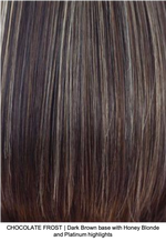 CHOCOLATE FROST | Dark Brown base with Honey Blonde and Platinum highlights
