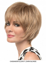 Cassandra Synthetic Wig (Basic Cap)