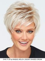 Chic It Up Synthetic Wig (Mono Crown)