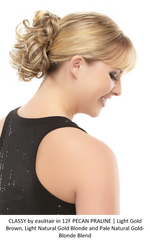 Classy Synthetic Ponytail (Clip-In)