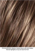 PECAN BROWN | Medium Golden Brown with Soft Golden Blonde highlights on top and near the front