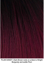 PLUM DANDY | Dark Brown roots on a blend of Bright Burgundy and subtle Plum