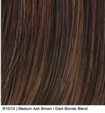 R10/14 | Medium Ash Brown / Dark Blonde Blend