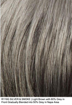 R119 SILVER & SMOKE | Light Brown with 80% Grey in Front Gradually Blended into 50% Grey in Nape Area