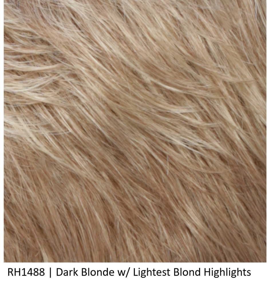 R1488 | Dark Blonde w/ Lightest Blond Highlights