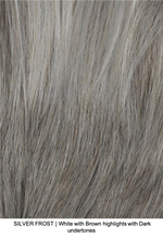 SILVER FROST | White with Brown highlights with Dark undertones