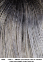 SMOKY GRAY R | Dark Roots blended to Medium Gray with Silver highlights and Blue undertones