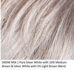 SNOW MIX | Pure Silver White with 10% Medium Brown and Silver White with 5% Light Brown Blend