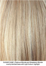 SUGAR CANE | Platinum Blonde and Strawberry Blonde evenly blended base with Light Auburn highlight