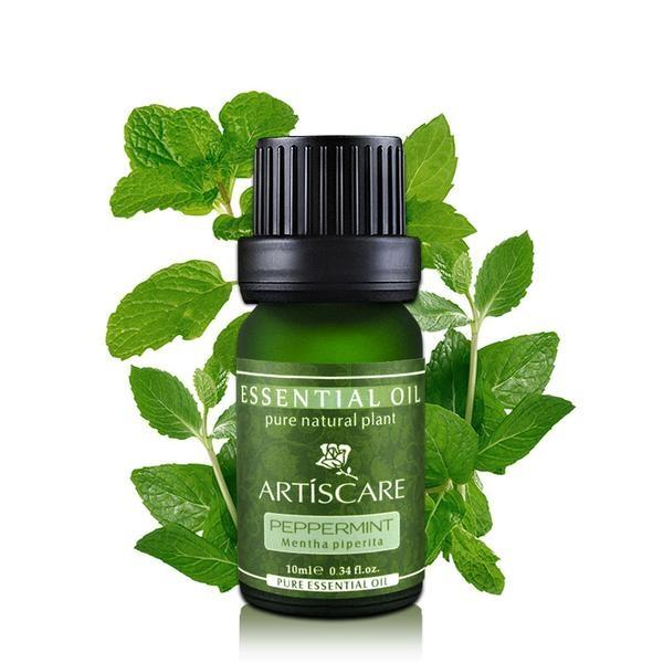 Peppermint Pure Essential Oil - cosmos-beauty