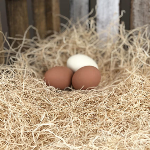 Happy Hen Treats® Nesting Pads