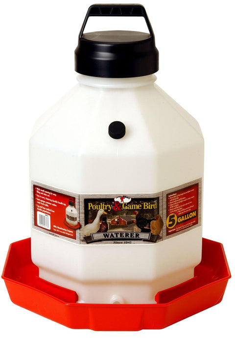 Little Giant® 5 Gallon Plastic Poultry Fount
