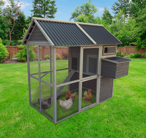 Coops & Feathers Walk In Coop with PVC Roof
