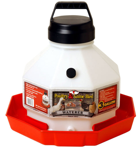3-Gallon Poultry Waterer Feeders & Waterers