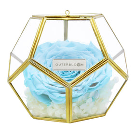 Crystal Florarium -  Tiffany Blue