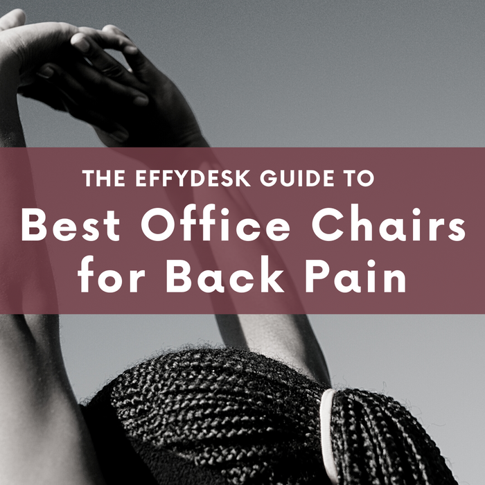 Best Office Chairs for Back Pain : The EFFYDESK Guide