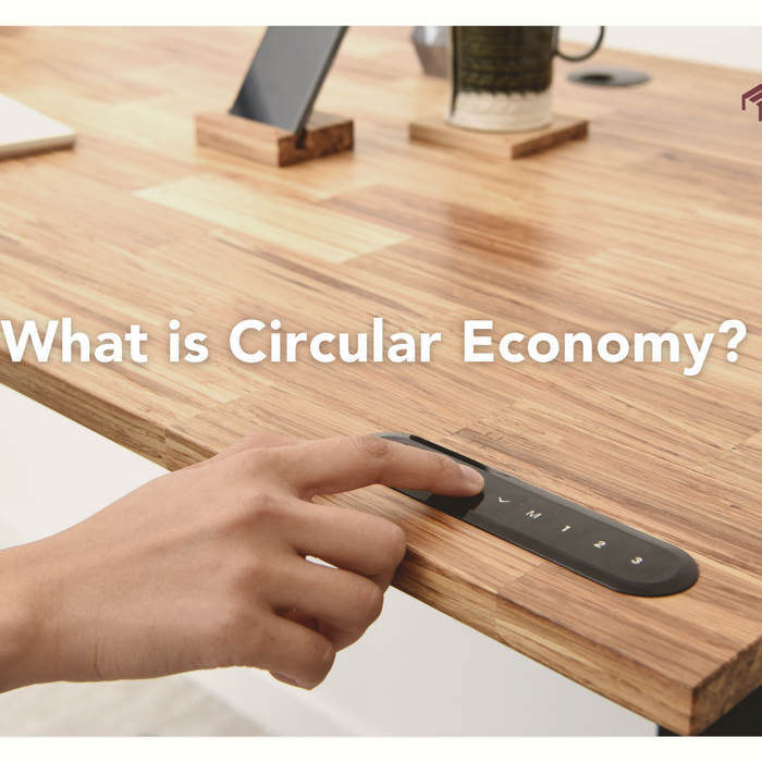 learn about circular economy and using TerraDesk Sustainable Eco-Friendly Standing Desk