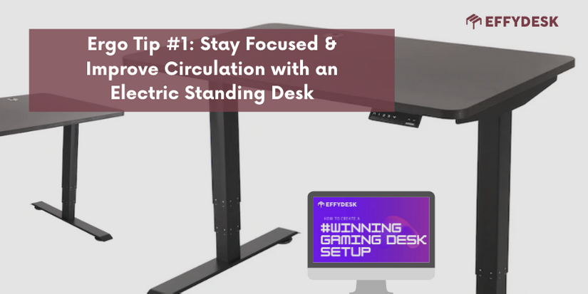 Electric Standing Desk | How to Create a Winning Gaming Desk Setup | EFFYDESK | Leading Standing Desk & Ergo Furniture Company in Canada
